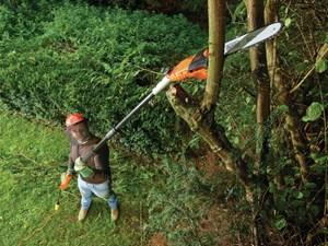 Black & Decker - Grensav på skaft 25 cm.