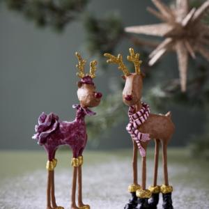 Medusa Hr. & Fru Rudolf 2021